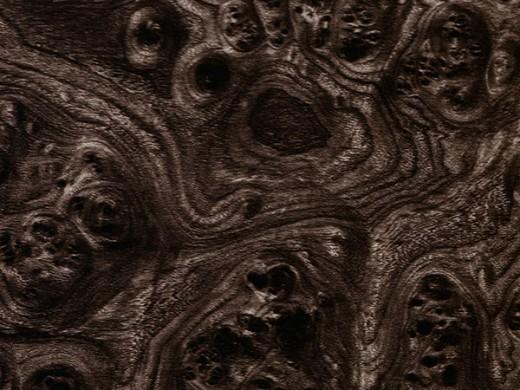 Черный корень - ширина 100см