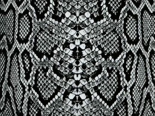 Ти-Рекс черный - пленка для аквапринта (шир. 100см)